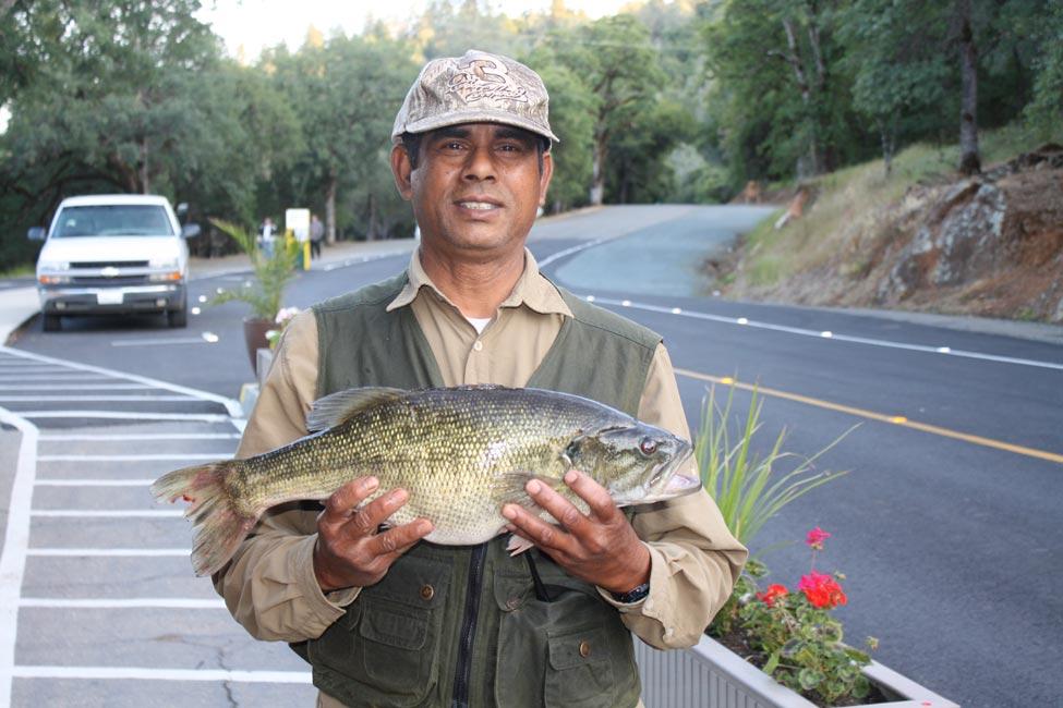 probhat-palma-6-lb-bass