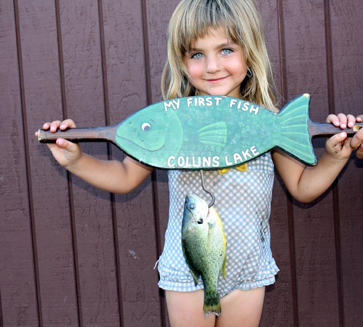 Collins lake do fish sleep for How do fishes sleep