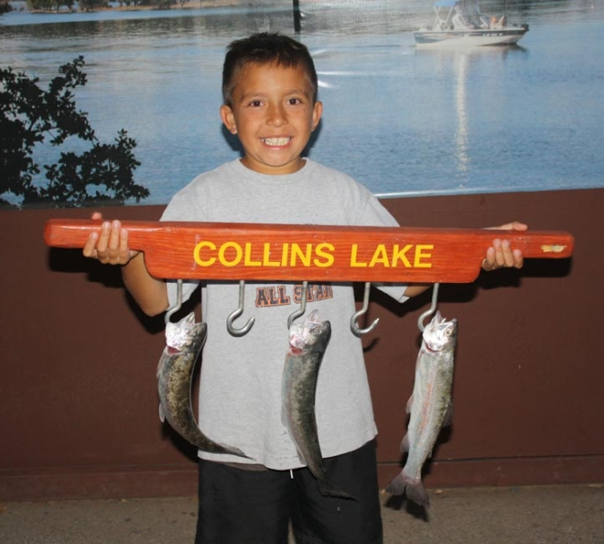 Collins lake september s catching cats for Cheney lake fishing report