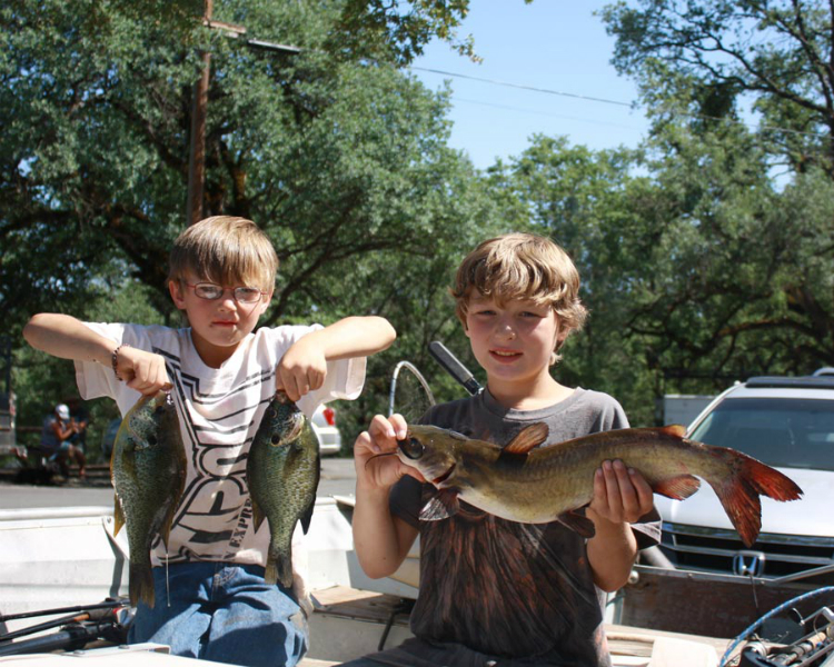 Collins lake the trout outranked the bass this week for Lake travis fishing report