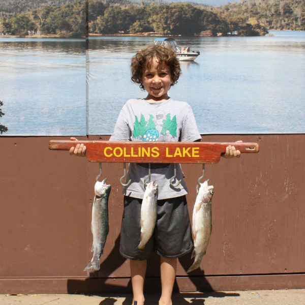 Collins lake our summer trout plant was a success for Collins lake fishing report