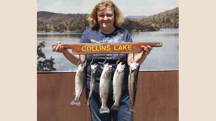 Vicki-Farley-limit-of-trout