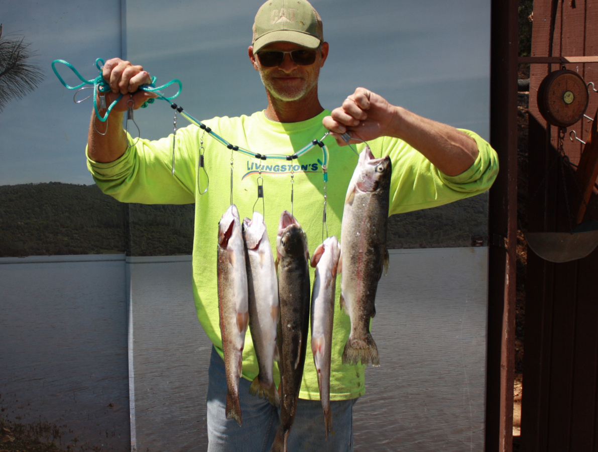 Collins Lake :: Fish of All Kinds & Fall RV Availability